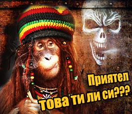 Банер, маймуна пуши марихуана