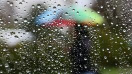 Прекрасен дъждовен ден, приятели!